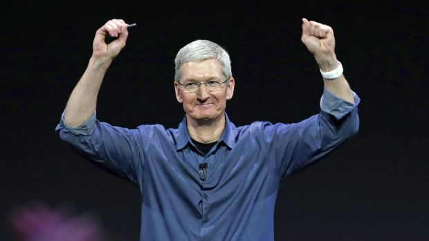 news-timcook-apple-ceo