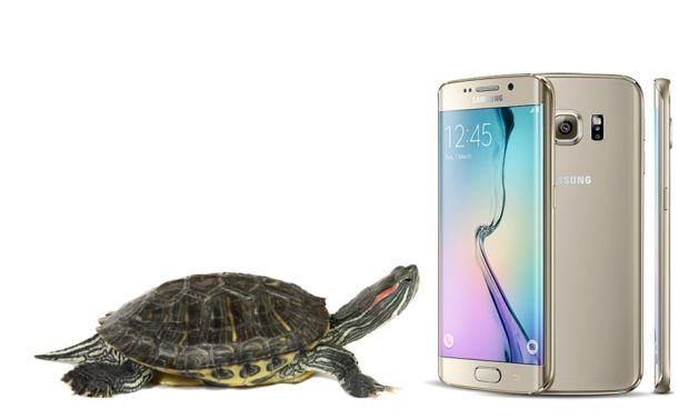 news-samsung-turtle_glass-1
