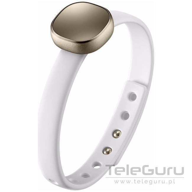 Samsung Smart Charm