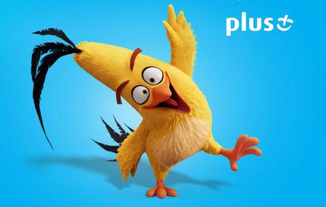 news-plus-konkurs-angry_birds