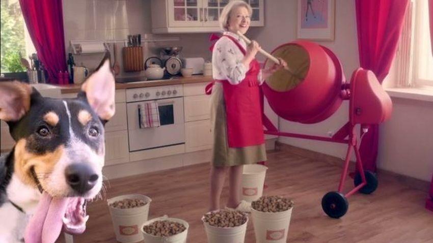 Virgin Mobile wystawia na aukcję platynowy numer i pomaga bezdomnym czworonogom