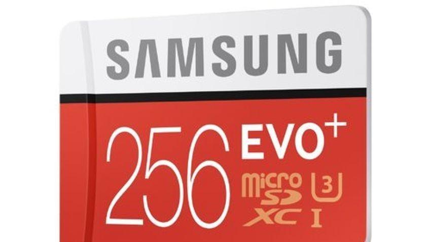 Karta Samsung EVO Plus 256 GB dla smartfonów