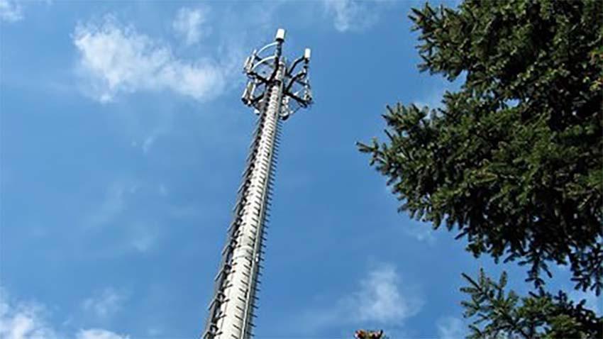 Rośnie popularność Internetu mobilnego w Orange