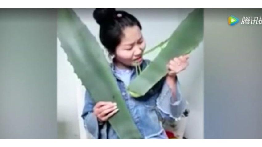 Photo of Autorka vloga o zdrowiu zatruła się podczas transmisji programu na żywo