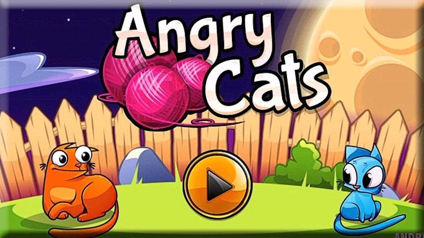 Photo of Recenzja Angry Cats
